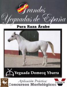 Yeguada Domecq Ybarra