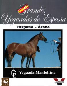 Yeguada Mantellina
