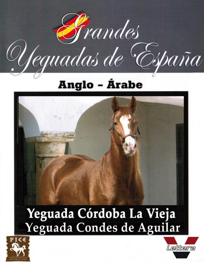 Yeguada Córdoba la Vieja