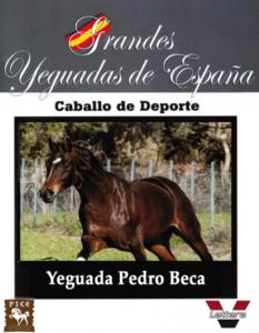 Yeguada Pedro Beca