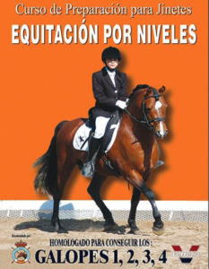 Equitación por niveles 4 parte 2