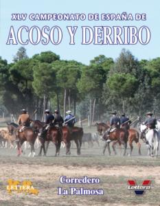 XLV Campeonato de España de Acoso y Derribo