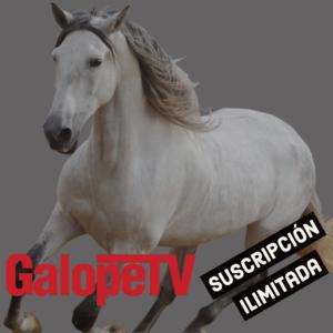 Suscripción anual GalopeTV
